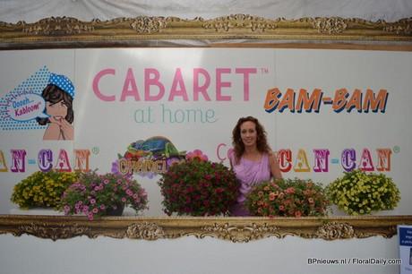 FloralDaily.com : Highlighted: Florensis, Benary ...