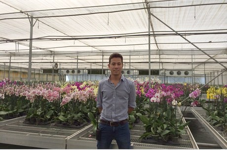 The current greenhouses are equipped with high tech technologies for example the company installed an aqua hort machine to tackle the erwinia bacteria in