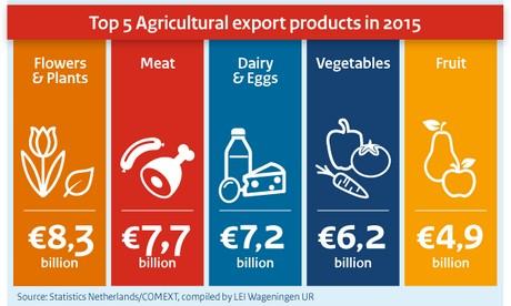 FloralDaily.com : Netherlands exports over 8 billion euros ...