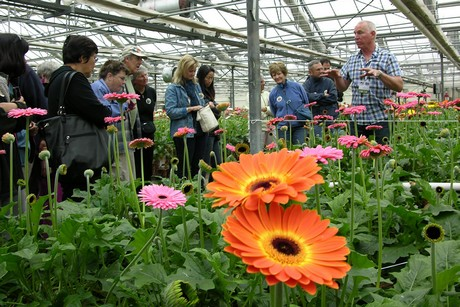 Us Ca Carpinteria Greenhouse Amp Nursery Tour
