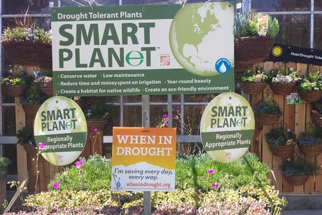 US: Drought conditions bring changes to Californian plant range