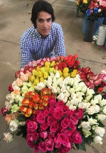 """FloralDaily.com : """"Low-season sales elevated by Costa ..."""