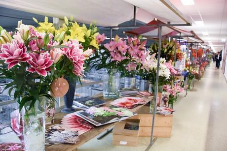 Image result for florist Lodz