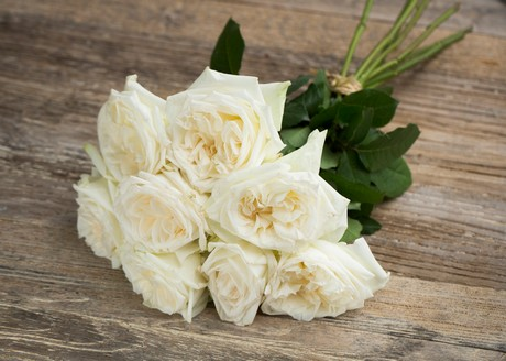 The Scented Garden Rose White Ou0027Hara Is Very Fragrant (5 Stars Out Of 5)  And Often Used For Weddings And Special Events. It Is Hardy To Ship And Its  Vase ...