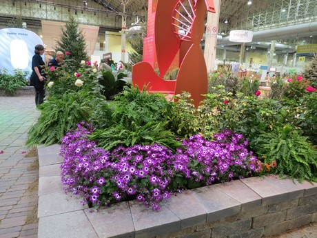 Us mi suntory shows off senetti in downtown chicago for Indoor gardening kalamazoo