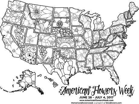USA Map Of State Flowers