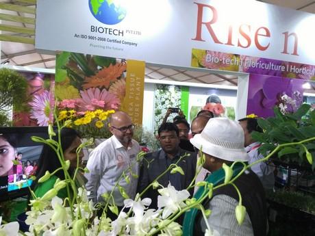 international flower industry