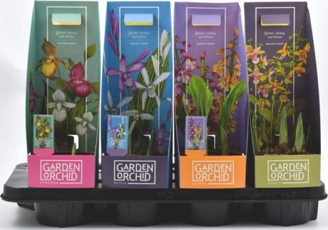 Garden Orchid nominated for Packaging Award 2018 on flower gardens for small yards, flower arch, kitchen designs, patio designs, flower display, swimming pool designs, flower desktop, flower gardening, flower gardens for florida, yard designs, flower coloring pages, backyard designs, flower beds, flower gardens with fountains, flower wallpaper, landscape designs, flower fences, vintage wallpaper designs, flower arrangements, flower background,