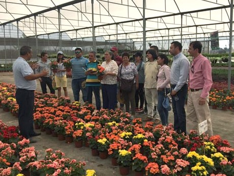 Colombian Nursery Growers Visit Mexico