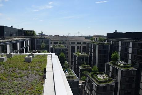 The Modern Green Roof Revolution